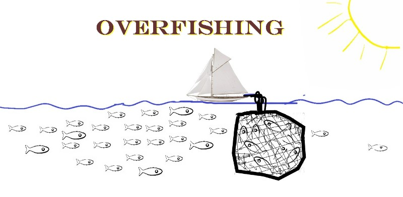 Over-fishing